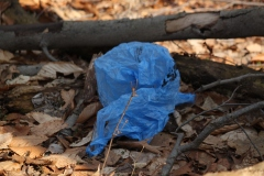 This is litter. It is a sign of human presence. I'm glad I found this bag. I used it to store other litter that I found while walking along the trail. Don't litter!