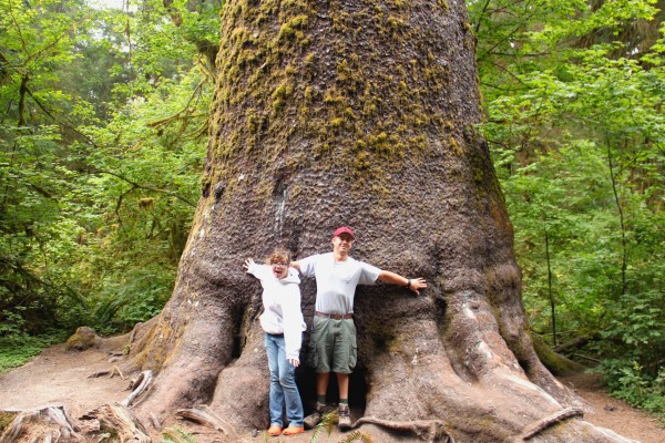 Sean and Brigette at a large Sitka Spruce.