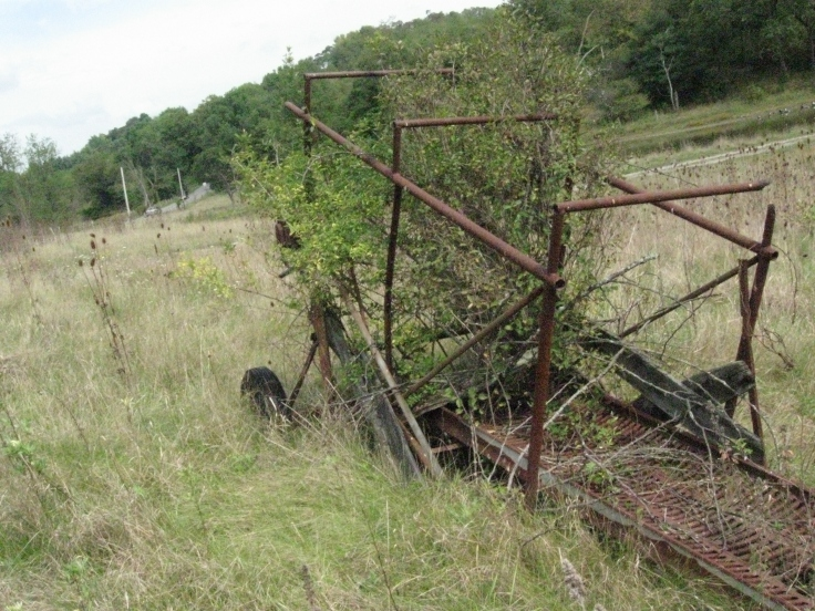 Abandoned equipment on unused farmland.